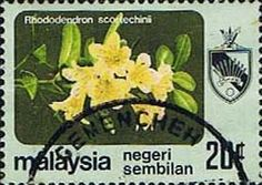 Malaya Negri Sembilan 1979 SG 107 Orchids Fine Used Scott 96 Other Asian and British Commonwealth Stamps HERE!