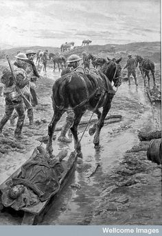 World War One; removal of wounded on horse drawn sledges Wellcome - Fortunino Matania - Wikipedia