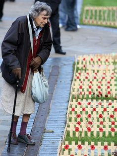 We will remember them. A woman looks at tributes during the Armistice Day service, at the cenotaph at City Hall, Belfast Remember The Fallen, Armistice Day, Remembrance Day, Belfast, Oppression, News Today, Looking For Women, Memorial Day, Woman