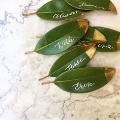 Lettering auf Blättern ergibt schöne Platzkarten. Die Spitze einfach ein gold Farbe tunken, dann sieht das ganze gleich viel edler aus! - 25 Magnolia Leaves, Fresh Wreath, Garland, Natural Wedding, Southern Decor, Magnolia Leaf Place Cards, Leaf Escort Cards, Floral supply