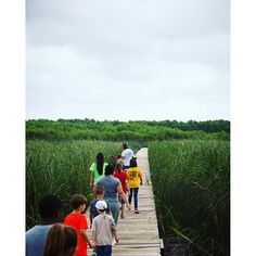 When you're a Baylor bio student during the summer, you get to lead elementary school field trips to the Waco Wetlands!