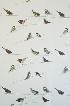 Garden Birds - Artisanal Wallpaper from The Wallpaper Collective