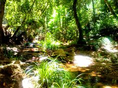 Walking path leading to waterfalls, Karlovasi, Samos Island