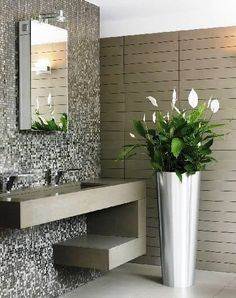 The Peace Lily, also known as the Spathiphyllum, is one of the most popular plants to grow indoors in medium or low light. Growing Plants Indoors, Peace Lily, House Plants Decor, Toilet Design, Interior Decorating, Interior Design, Interior Plants, Living Room Decor, Home Decor