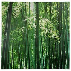 Bamboo Grove Canvas Wall Art (China)   Overstock.com Shopping - Big Discounts on Canvas Art