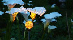 solar powered globe lily light