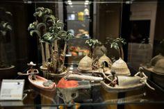 A exposição Um laboratório para sustentabilidade reúne uma seleção dos melhores artigos da arte popular brasileira, úteis para a vida cotidiana e às vezes vestíveis, com objetos escolhidos com cuidado e competência entre as melhores obras de artesanato.