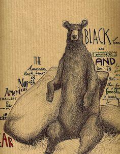 #bear #illustration