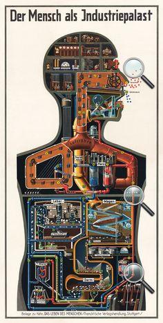 physioklin.de: Der Mensch als Industriepalast
