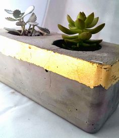 nostalgiecat: Concrete and gold........Succulent planter and tea light votive...DIY