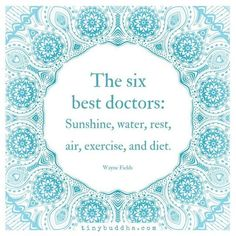 The six best doctors: sunshine, water, rest, air, exercise and diet. Yeah baby, this is totally  #WildlyAlive! #selflove #fitness #health #nutrition #weight #loss LEARN MORE →  www.WildlyAliveWeightLoss.com