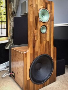 Lampizator P17 Endorphine open baffle speakers.