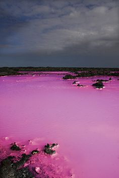 Lake Retba or Lac Rose, north of Senegal.