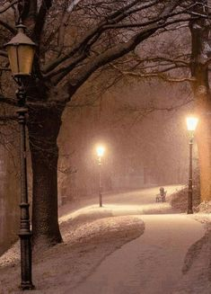 The one lamp post being lit makes me think of Narnia Winter Szenen, Winter Magic, Winter Walk, Snow Scenes, Winter Beauty, Winter Pictures, Jolie Photo, Winter Landscape, Pretty Pictures