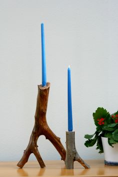 diy: free tree branch candle holder |