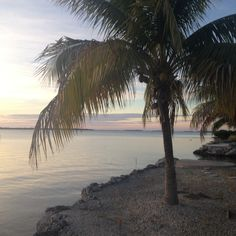 Gulf side of Big Pone Key Big Pine Key, Celestial, Sunset, Beach, Water, Outdoor, Gripe Water, Outdoors, The Beach