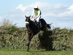 April 2015 - Aintree - Many Clouds stormed to victory in the Grand National under Irish jockey Leighton Aspell, Horse Racing Uk, Horse Racing Betting Tips, Racing News, Many Clouds, Horse Galloping, Sport Of Kings, Racehorse, Grand National, All The Pretty Horses