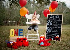 Elmo Cake Smash  First birthday boy one year old Friendswood, Tx Sarah Victoria Photography
