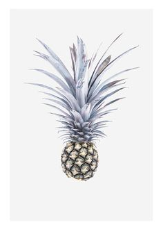 Blue Pineapple, poster
