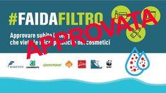 COLPO DI SCENA!!!! Un Emendamento in Finanziaria proibisce i #cottonfioc in plastica dal 2019 e le #microplastiche nei cosmetici dal 2020!!!! Grande vittoria della coalizione #FaiDaFiltro che comprende i partner di Clean Sea LIFE #Legambiente  e MedSharks con Marevivo WWF Italia Greenpeace Italia LAV LIPU. Grazie a Ermete Realacci  Silvia Velo Ministero dell'Ambiente e della Tutela del Territorio e del Mare  http://ift.tt/2B3ndJb