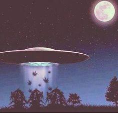 Aliens taking somebody's dank lol