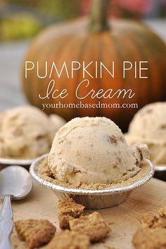 Pie Ice Cream Pumpkin pie ice cream - This seriously looks delicious! I'm loving all things pumpkin right now!Pumpkin pie ice cream - This seriously looks delicious! I'm loving all things pumpkin right now! Köstliche Desserts, Frozen Desserts, Frozen Treats, Dessert Recipes, Pie Recipes, Yummy Recipes, Dessert Healthy, Healthy Recipes, Health Desserts