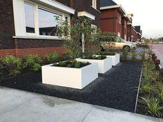Dream Garden, Home And Garden, Contemporary Garden, Concrete Planters, Raised Garden Beds, Home And Living, Garden Landscaping, Planter Boxes, New Homes