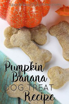 Homemade Dog Food Reward your furry friend this fall with a homemade treat. Get this Pumpkin Banana Dog Treat Recipe at Sparkles of Sunshine today. Dog Cookie Recipes, Homemade Dog Cookies, Dog Biscuit Recipes, Homemade Dog Food, Dog Treat Recipes, Dog Food Recipes, Doggie Cookies Recipe, Pumpkin Dog Treats Homemade, Peanut Recipes