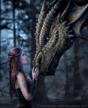 Once upon a Time Picture by Anne Stokes, this features a young woman and a striking dragon. Anne Stokes, Magical Creatures, Fantasy Creatures, Tree Sketches, Dragon Girl, Legends And Myths, Dragon's Lair, Dragon Artwork, Dragon Pictures