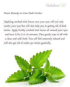 Home Remedy to Cure Dark Circles:  Applying crushed mint leaves over your eyes will not only soothe your eyes but will also help you in getting rid of dark circles. Apply freshly crushed mint leaves all around your eyes and leave it for 5 or 10 minutes. Then gently wipe it off with a clean and cold cloth. You will feel extremely relaxed and will also get rid of under eye circles gradually.  ==> www.Vedabox.com