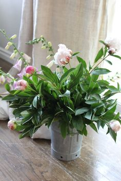 """peonies....love the """"ball"""" stage when you are never sure of the color."""