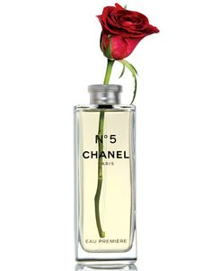 ~Red Rose in Chanel bottle~
