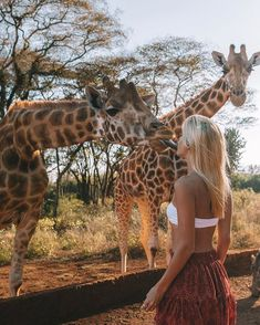 Woman spends her big day in a manor surrounded by GIRAFFES - Safari Photography Summer Aesthetic, Travel Aesthetic, Places To Travel, Places To Go, Foto Top, Jolie Photo, Adventure Is Out There, Travel Goals, Dream Vacations
