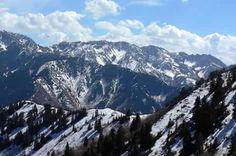 Millcreek Canyon - Utah