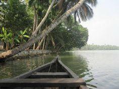 Homestay and Canoe tours from Munroe Island through the Ashtamudi Lake Backwaters. Duck Farming, Kerala Backwaters, Kerala Tourism, Best Model, Canoe, Boat, Tours, Island, Country