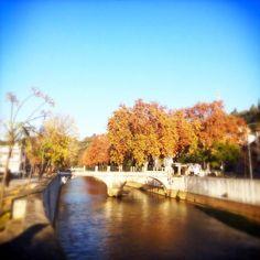 PhotoFriday :: Signs of Autumn | Jardim Luís de Camões