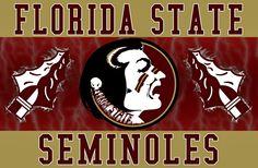 Florida State University ~ Tallahassee, Florida - Go Noles!!! 1993, 1996, & 2013 Football National Champions!!!