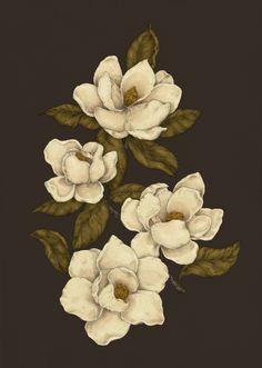 Magnolias Art Print by Jessica Roux | Society6