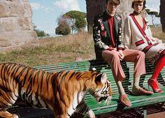 A nova campanha da Gucci tem leões, tigres e girafas - Novidades - Máxima.pt