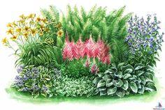 Тень цветам не помеха: примеры замечательных цветочных композиций из неприхотливых растений - Как поэтичен ты, как свеж и как хорош, от роскоши твоей порой бросает в дрожь, цветущий сад, прославленный в веках! Мы здесь поговорим о цветниках - Форум-Град