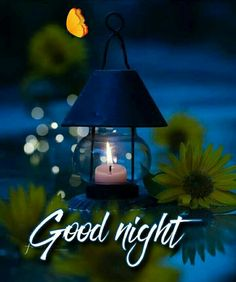 In today's post, we have brought you beautiful good night love images. If you love someone, and are looking for beautiful good night images for them. Good Night Quotes Images, New Good Night Images, Good Night Gif, Good Night Honey, Cute Good Night Quotes, Night Pictures, Good Night Flowers, Beautiful Good Night Images, Romantic Good Night