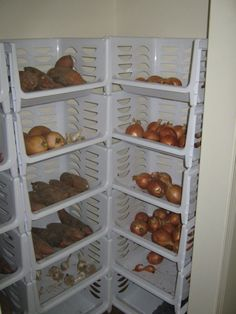 Storing Vegetables Without A Root Cellar