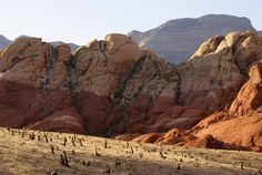 Red Rock Canyon | Red Rock Canyon