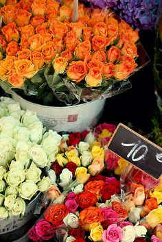 paris_diary_flowers by keikolynnsogreat, via Flickr