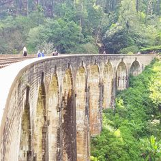 Beautiful bridge...I'll see it tomorrow when I take the train! These shots were taken by the bf, as I had to rest from the mini hike while he went for more walks 🙃 . . . . . #ninearchesbridge #bridge #srilanka #ella #chroniclife #spoonietravel