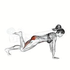 Barbell Hip Thrust, Barbell Deadlift, Barbell Curl, Back Workout Men, Close Grip Bench Press, Workout Videos, Exercise Videos, Workout Exercises, Calisthenics