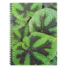 Blooming Rodgersia Floral Notebook - floral style flower flowers stylish diy personalize