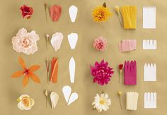 How to make crepe paper flowers in case of the doldrums make all of these flowers with crepe paper mightylinksfo