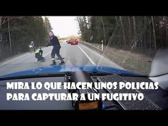 Ultimas Noticias Del Mundo: Mira Lo Que Hacen Unos Policias Para Capturar A Un...