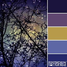 Night Sky  - love the color palette